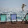 Co spakować do walizki na wyjazd nad morze?