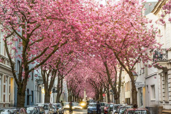 Bonn, Niemcy