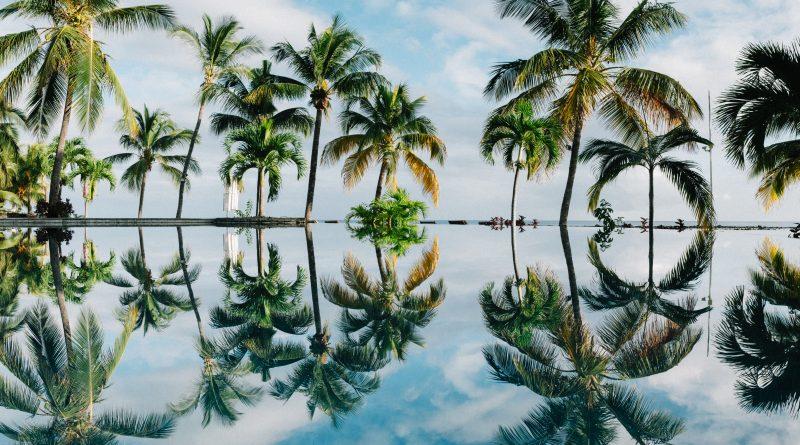 Brazylia, Mauritius i St. Maarten łagodzą restrykcje.