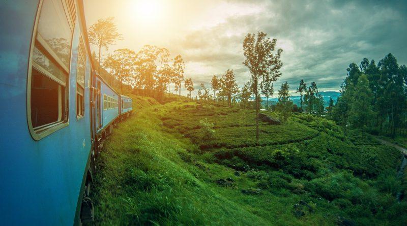 Sri Lanka od stycznia przywita z powrotem turystów, ale z pewnymi wyjątkami